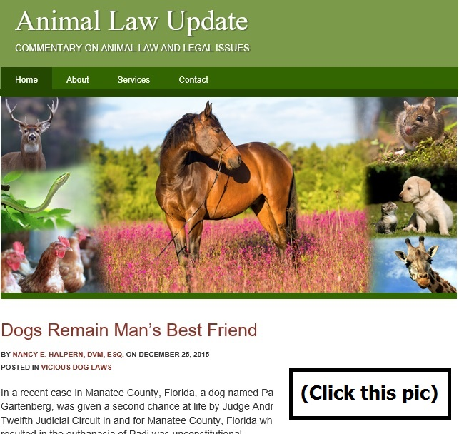 Animal Law Update Click